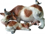 Dairy Cow and Calf