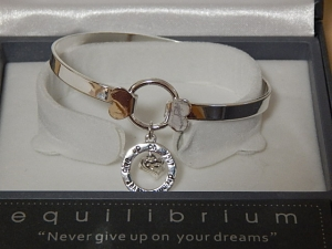 Equilibrium Bangle Inspirational Charm Dreams **CLEARANCE COST PRICE ONLY**