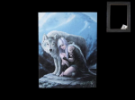 Anne Stokes Canvas - Protector