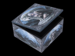 Anne Stokes Box with Mirror - Protector