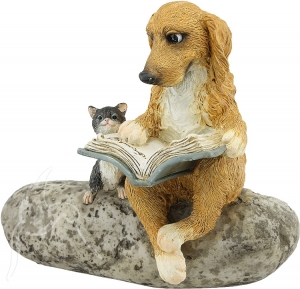 Dog Reading on Rock