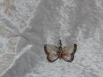 Antique Silver Enamel Butterfly Pendant