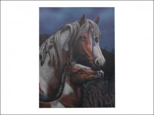 Lisa Parker Canvas 40 x 30cm - Apache