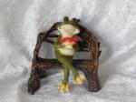 Fun Frog B