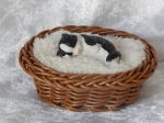 Cat in Basket Small A