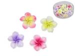Set of 4 Mini Frangipani Flowers
