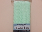 Eyelet Lace Pack of 15m Mint