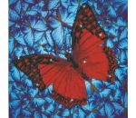 Diamond Dotz Flutter by Red