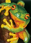 Diamond Dotz Green Tree Frog