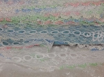 Feather Eyelet Lace Per Meter Iridescent White/Multi