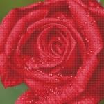 Diamond Dotz Diamond Art - Rose Dew